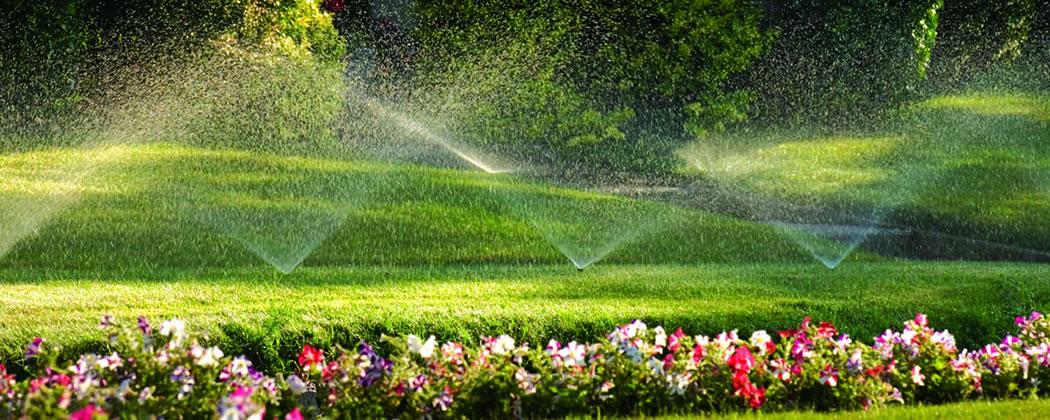 Image gallery landscape irrigation How to landscape