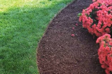 Pruning and Mulching Services